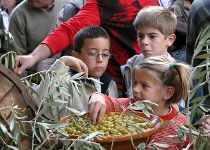 Olive Fair in Caimari