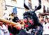 Sant Antoni in Artà: Foto 3
