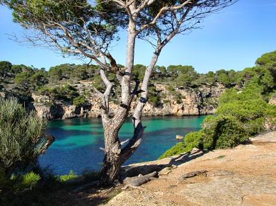 http://www.mallorcaweb.com/portal/img/fotografies/1228/cala-pi-2.jpg